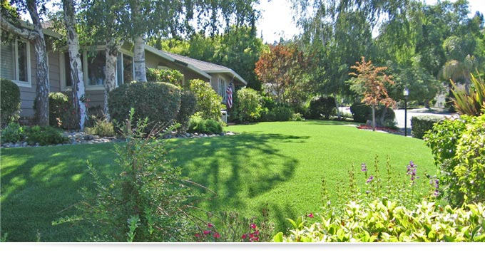 Artificial Lawns Direct